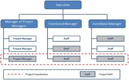 Strong Matrix Organizational Structure