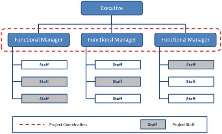 Functional Organizational Structure