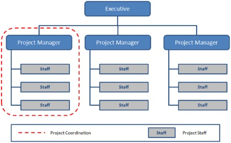 Project-Based Organizational Structure