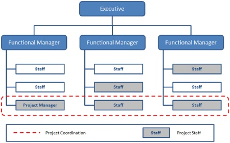 Balanced Matrix Organizational Structure